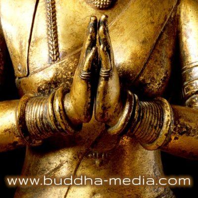 buddha-media.com
